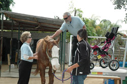 Convaid Donates Wheelchairs to Equine-Assisted Therapy Program