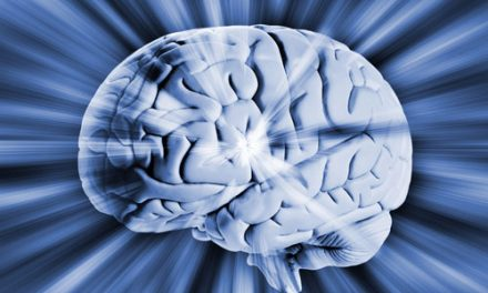 Craig Hospital Set to Host 2015 Brain Injury Summit