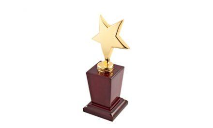 Bioness Inc Receives Frost & Sullivan Award for Market Leadership