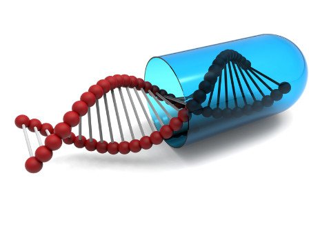 Gene Therapy Appears to Halt Duchenne Muscle Deterioration