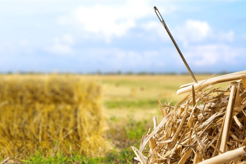 Reversing SCI and Stroke Damage is Like Finding a Needle in a Haystack